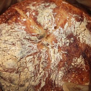 No-Knead Beer Bread